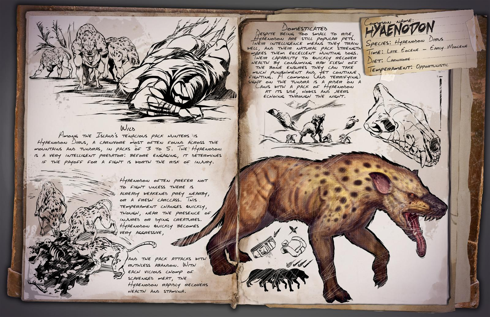 Patch 258 hyaenodon megatherium megalania hesperornis hyaenodon dirus a carnivore most often found across the mountains and tundras in packs of 3 to 6 the hyaenodon is a very intelligent predator malvernweather Images