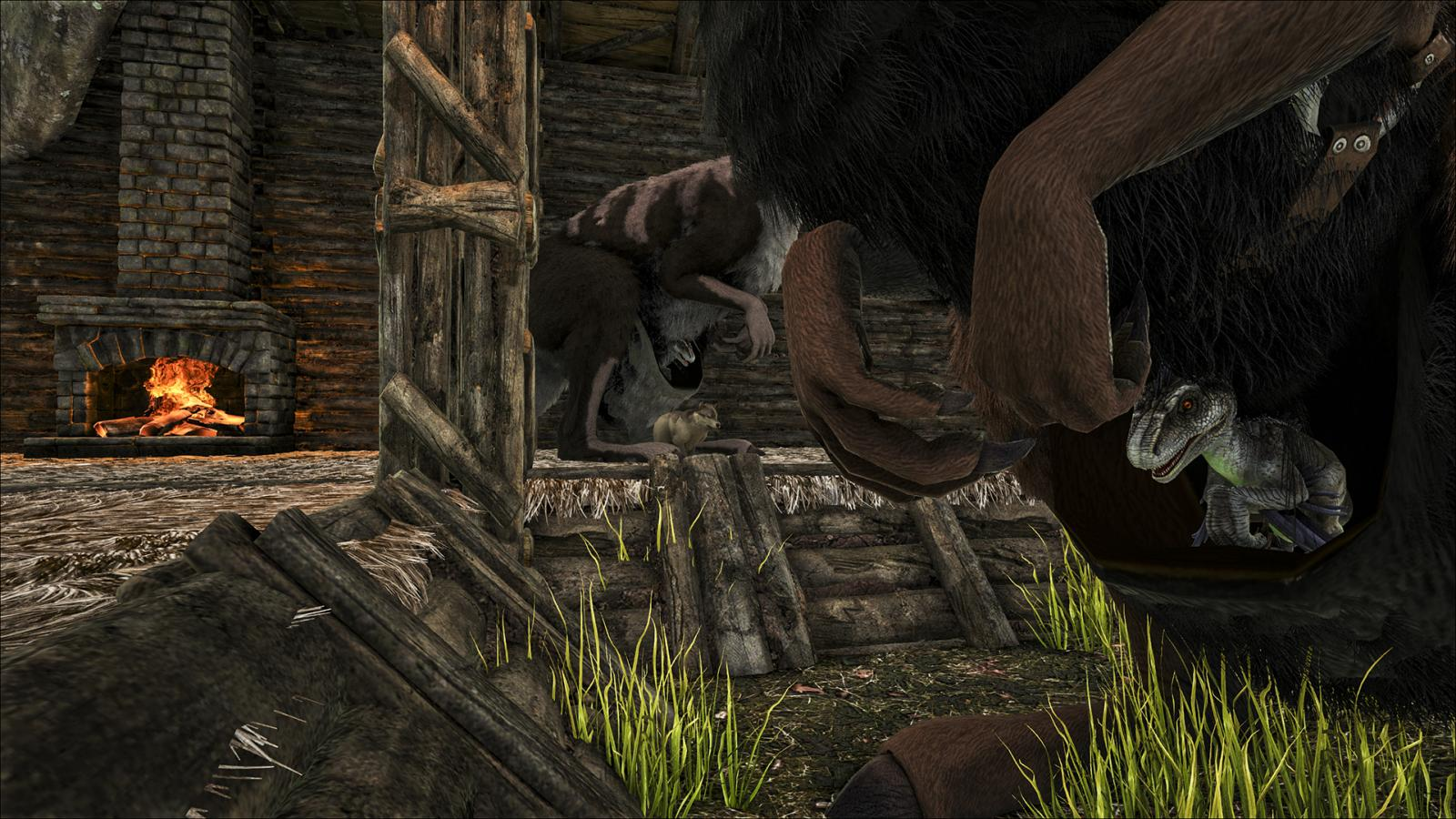 Ark Baby Food Consumption Reduced