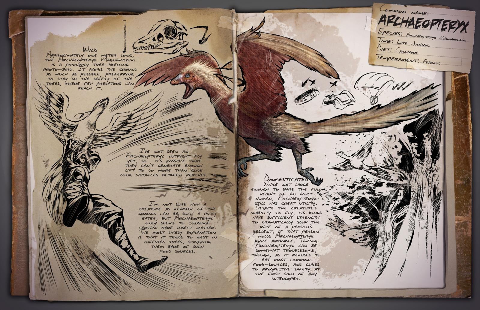 large-dossier_archaeopteryx